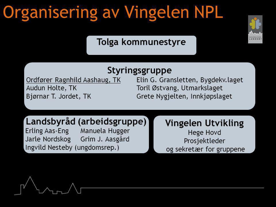 Organisering av Vingelen NPL Tolga kommunestyre Styringsgruppe Ordfører Ragnhild Aashaug, TK Elin G. Gransletten, Bygdekv.laget Audun Holte, TK Toril