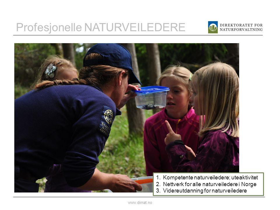 Profesjonelle NATURVEILEDERE www.dirnat.no 1.Kompetente naturveiledere; uteaktivitet 2.Nettverk for alle naturveiledere i Norge 3.Videreutdanning for