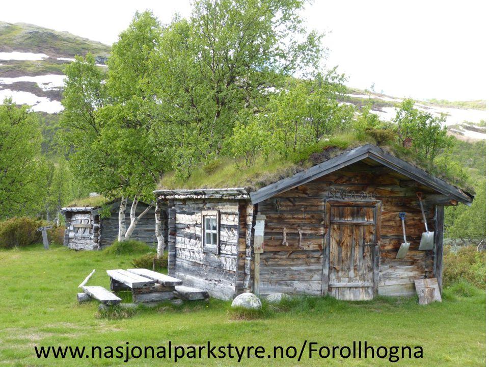 www.nasjonalparkstyre.no/Forollhogna