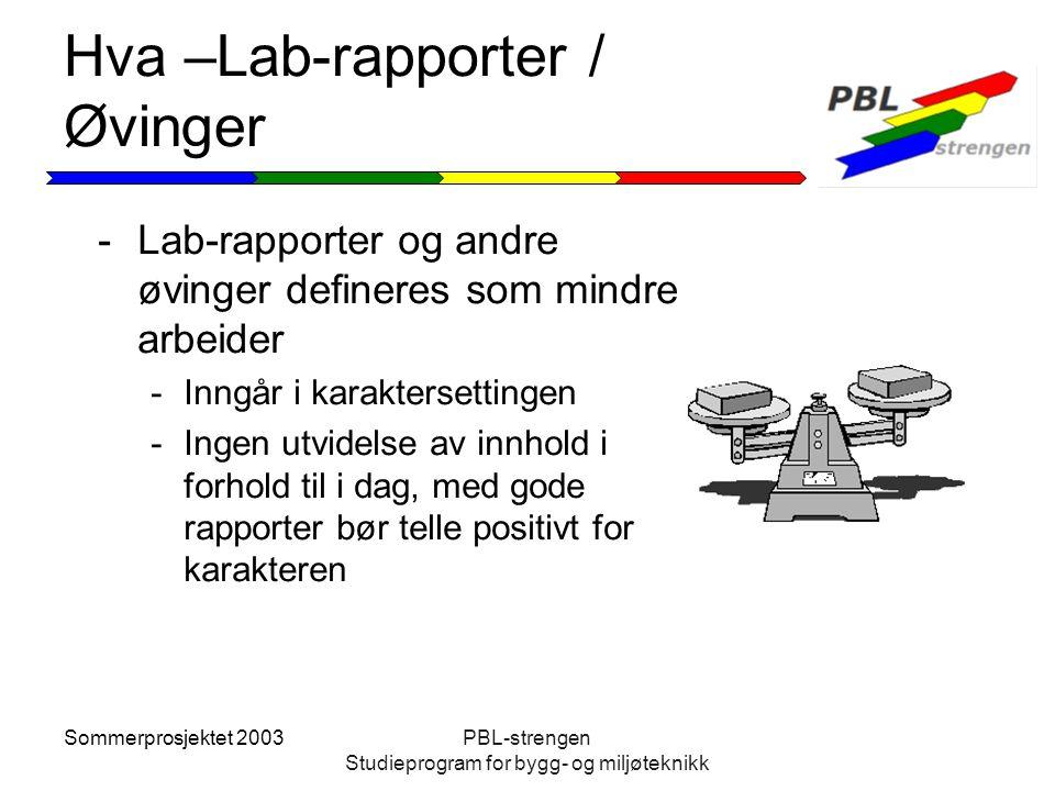 Sommerprosjektet 2003PBL-strengen Studieprogram for bygg- og miljøteknikk Hva –Lab-rapporter / Øvinger -Lab-rapporter og andre øvinger defineres som m