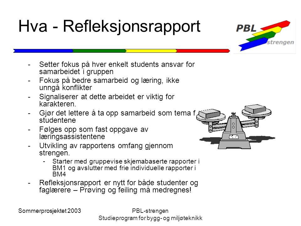 Sommerprosjektet 2003PBL-strengen Studieprogram for bygg- og miljøteknikk Hva - Refleksjonsrapport -Setter fokus på hver enkelt students ansvar for sa