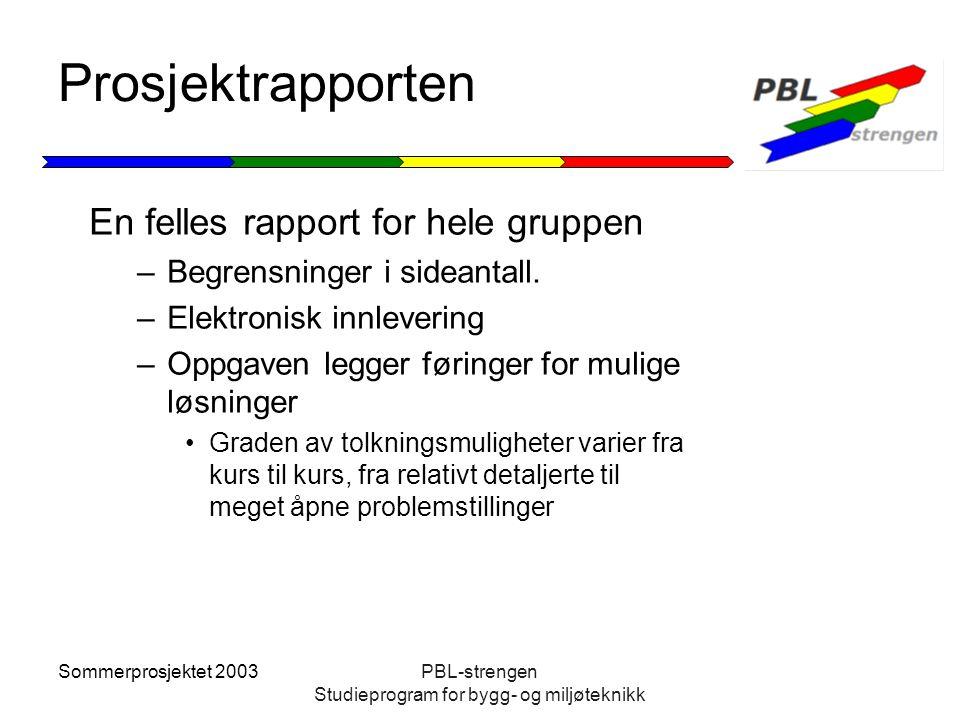 Sommerprosjektet 2003PBL-strengen Studieprogram for bygg- og miljøteknikk Prosjektrapporten En felles rapport for hele gruppen –Begrensninger i sidean
