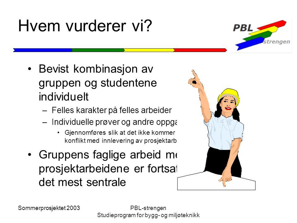Sommerprosjektet 2003PBL-strengen Studieprogram for bygg- og miljøteknikk Hvem vurderer vi? Bevist kombinasjon av gruppen og studentene individuelt –F