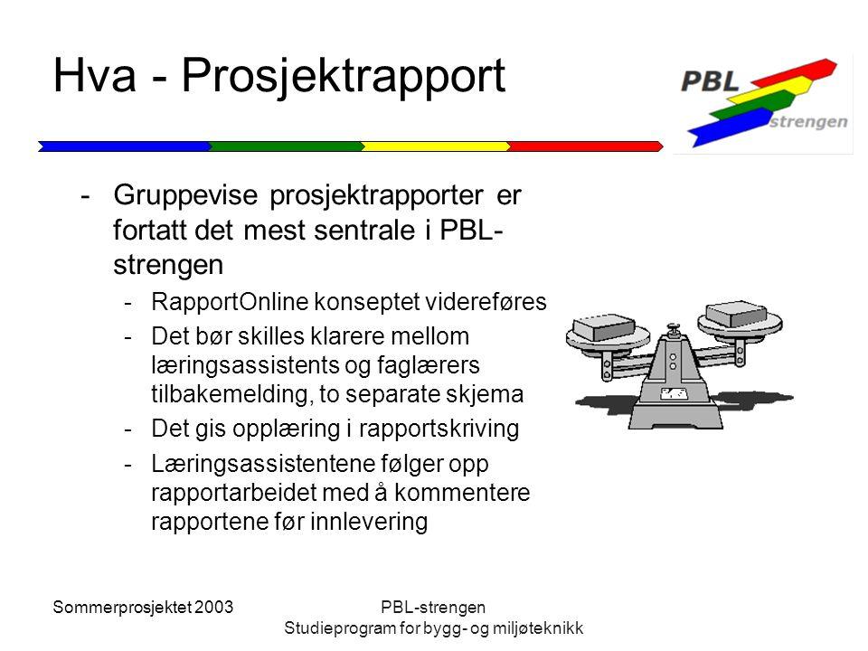 Sommerprosjektet 2003PBL-strengen Studieprogram for bygg- og miljøteknikk Hva - Prosjektrapport -Gruppevise prosjektrapporter er fortatt det mest sent
