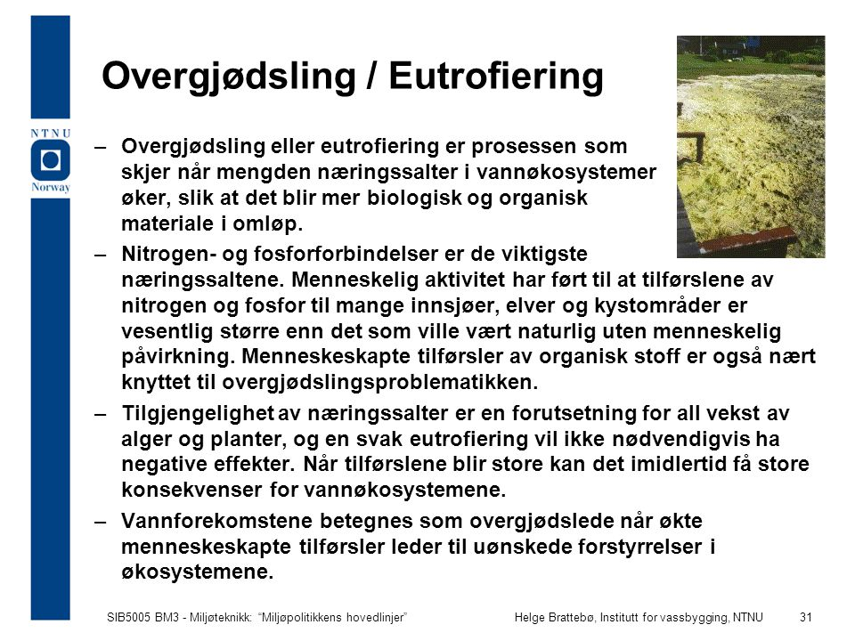"""SIB5005 BM3 - Miljøteknikk: """"Miljøpolitikkens hovedlinjer""""Helge Brattebø, Institutt for vassbygging, NTNU 31 Overgjødsling / Eutrofiering –Overgjødsli"""