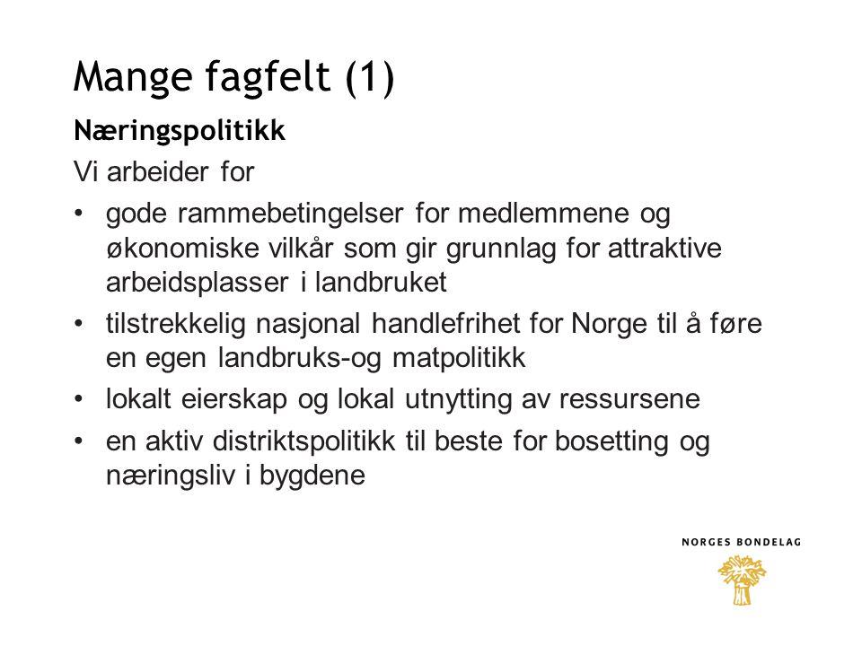 Mange fagfelt (2) Internasjonale saker Vi arbeider for en WTO-avtale som sikrer et levedyktig landbruk i hele landet at Norge ikke blir medlem av EU norske interesser i internasjonale fora Skatt Vi arbeider for at skatte- og avgiftssystemet skal være et sentralt element i næringsdrivendes rammevilkår et skattesystem som sikrer de næringsdrivende muligheter til å opparbeide seg rett til offentlige ytelser ved alderdom, sykdom og uførhet