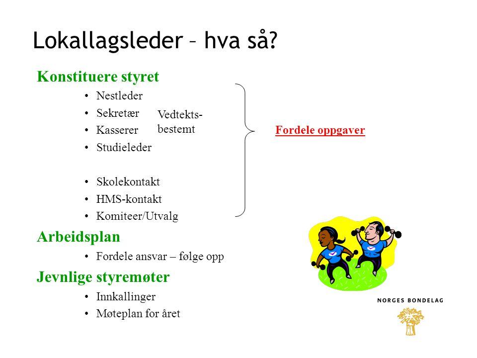 Lokallagsleder – hva så.Informasjon – post – e-post Fra NB og fylkeslag Fra kommunen, andre org.