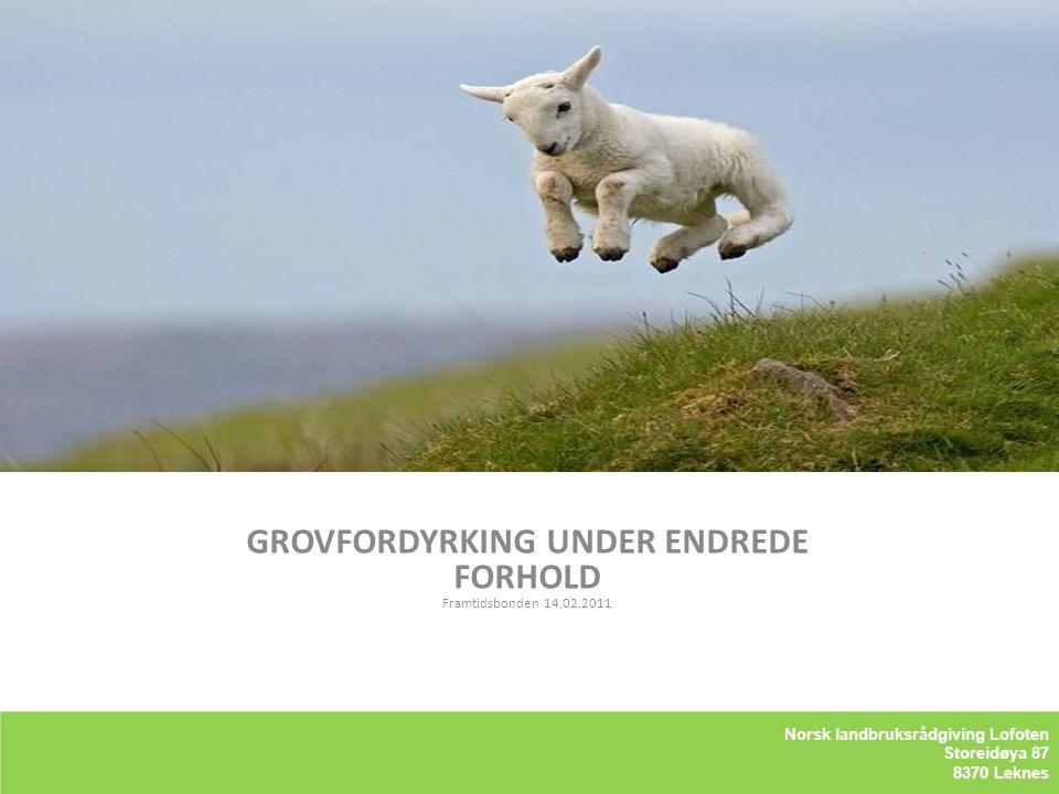 Kriterier for Lofotlam GROVFORDYRKING UNDER ENDREDE FORHOLD Framtidsbonden 14.02.2011 LOFOTLAM BA Storeidøya 87 8370 Leknes Norsk landbruksrådgiving L