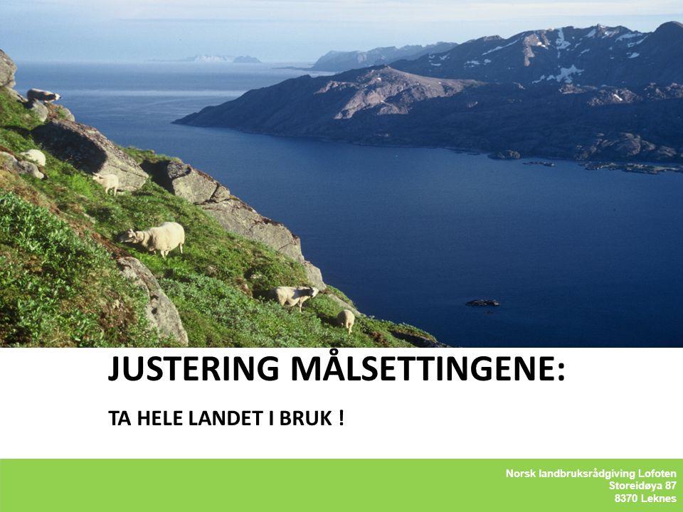 Norsk landbruksrådgiving – Lofoten Storeidøya 87 8370 Leknes Bygdeservice JUSTERING MÅLSETTINGENE: TA HELE LANDET I BRUK ! Kåre Holand - Lofoten Holan