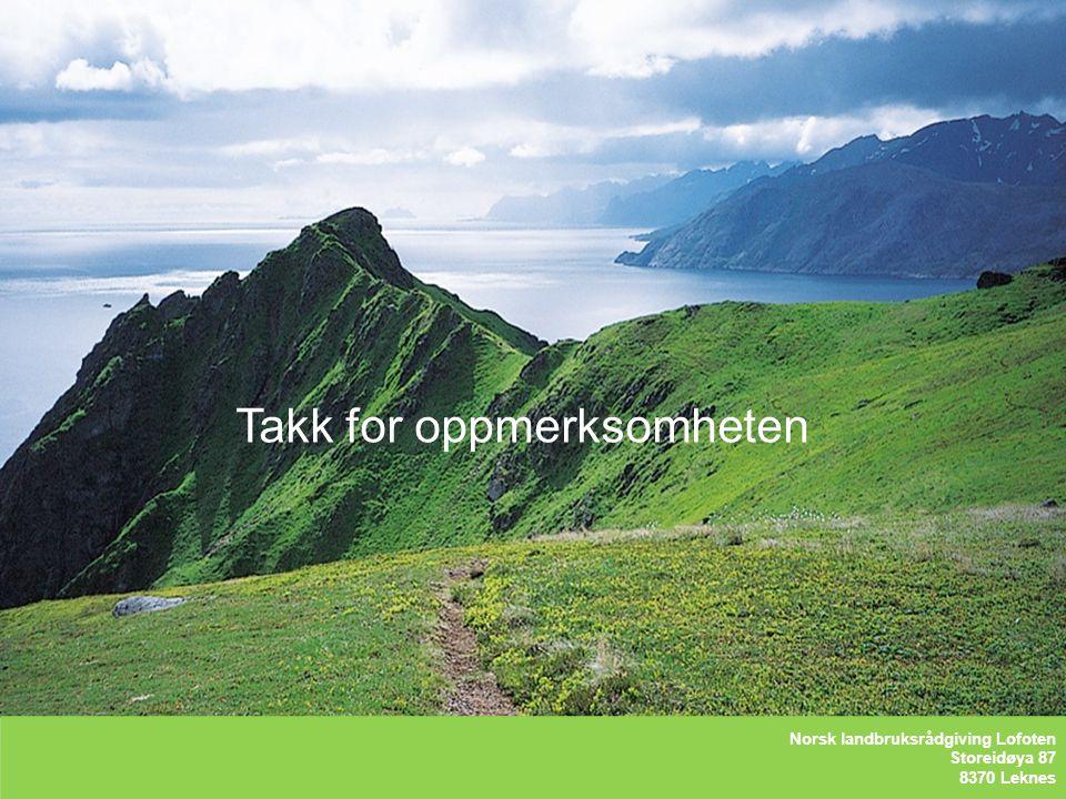 Kåre Holand – Lofoten Holandsveien 98 8370 Leknes Takk for oppmerksomheten LOFOTLAM BA Storeidøya 87 8370 Leknes Norsk landbruksrådgiving Lofoten Stor