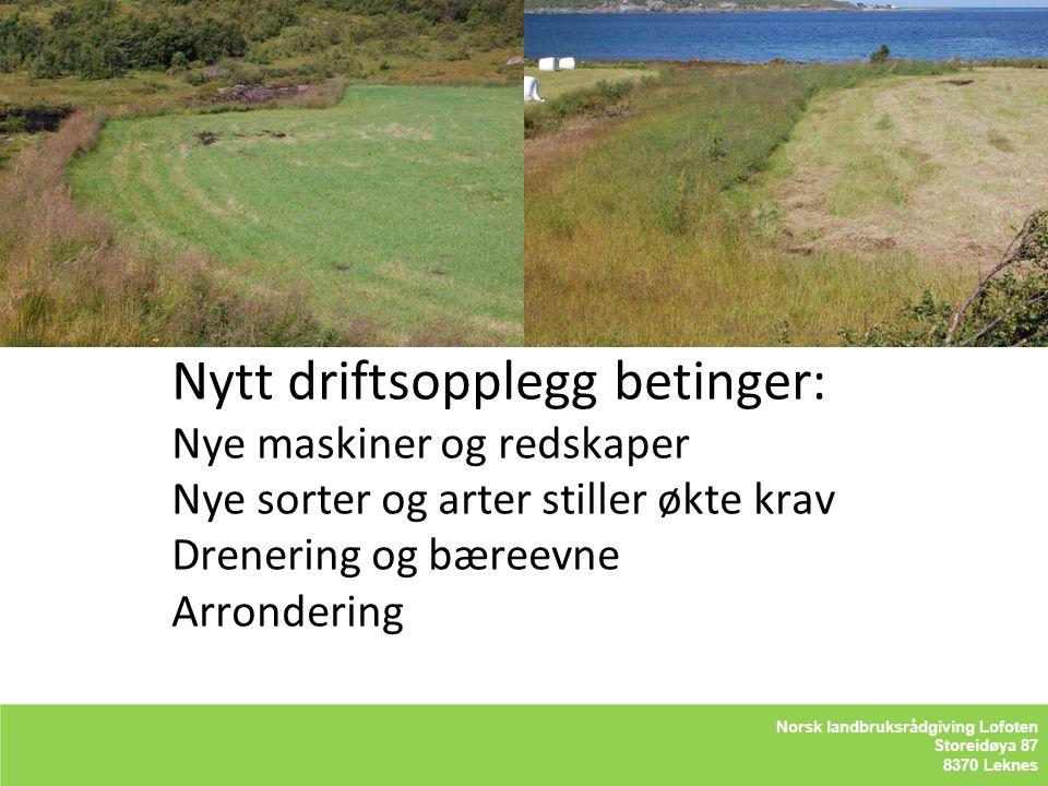 Nytt driftsopplegg betinger: Nye maskiner og redskaper Nye sorter og arter stiller økte krav Drenering og bæreevne Arrondering LOFOTLAM BA Storeidøya