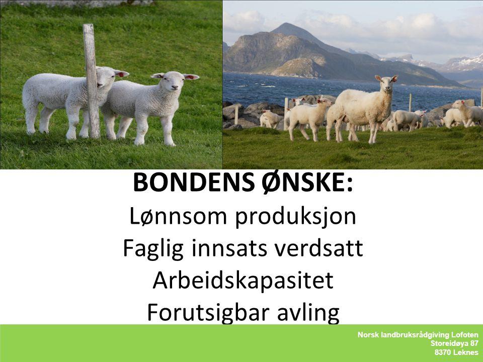 BONDENS ØNSKE: Lønnsom produksjon Faglig innsats verdsatt Arbeidskapasitet Forutsigbar avling LOFOTLAM BA Storeidøya 87 8370 Leknes LOFOTLAM BA Storei