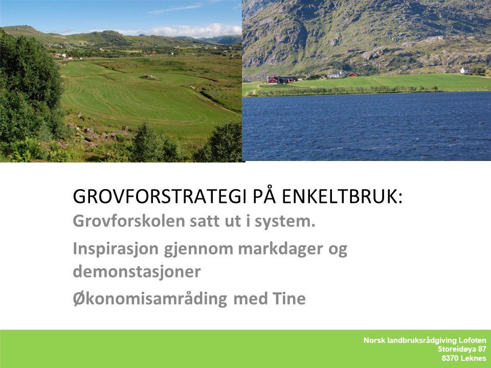 Kåre Holand – Lofoten Holandsveien 98 8370 Leknes GROVFORSTRATEGI PÅ ENKELTBRUK: Grovforskolen satt ut i system. Inspirasjon gjennom markdager og demo