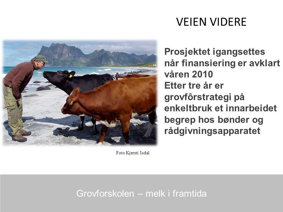 VEIEN VIDERE Grovforskolen – melk i framtida Prosjektet igangsettes når finansiering er avklart våren 2010 Etter tre år er grovfôrstrategi på enkeltbruk et innarbeidet begrep hos bønder og rådgivningsapparatet Foto Kjersti Isdal