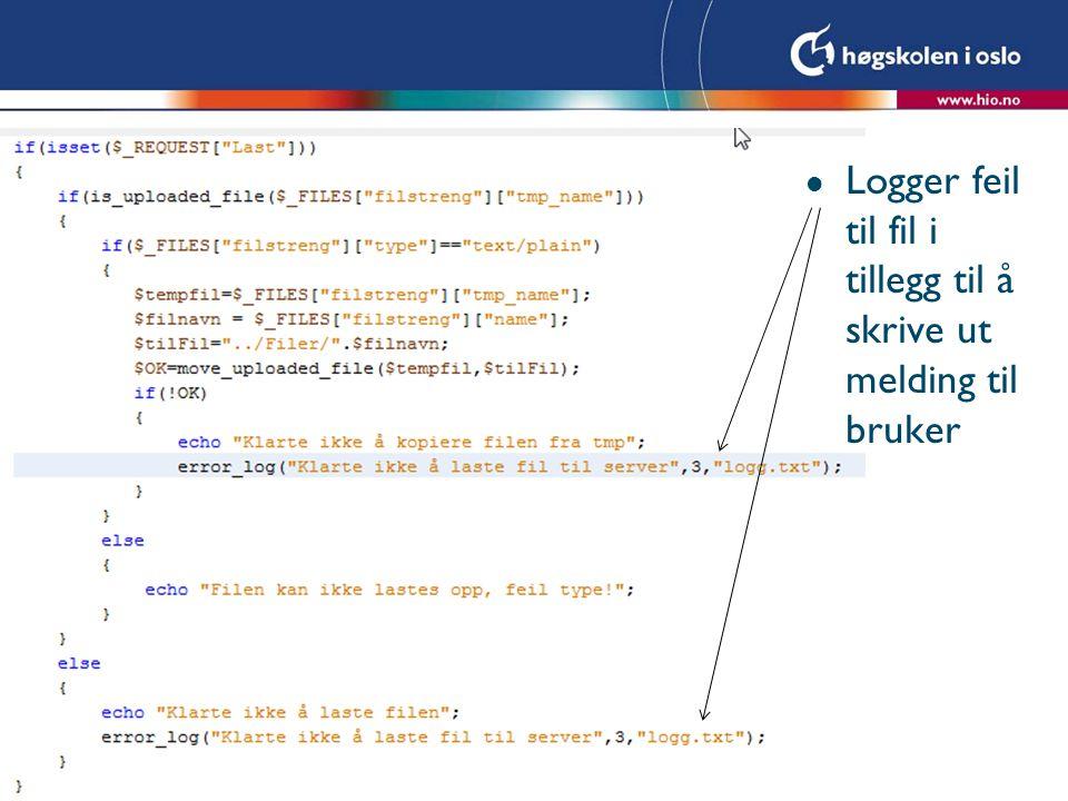 l Logger feil til fil i tillegg til å skrive ut melding til bruker