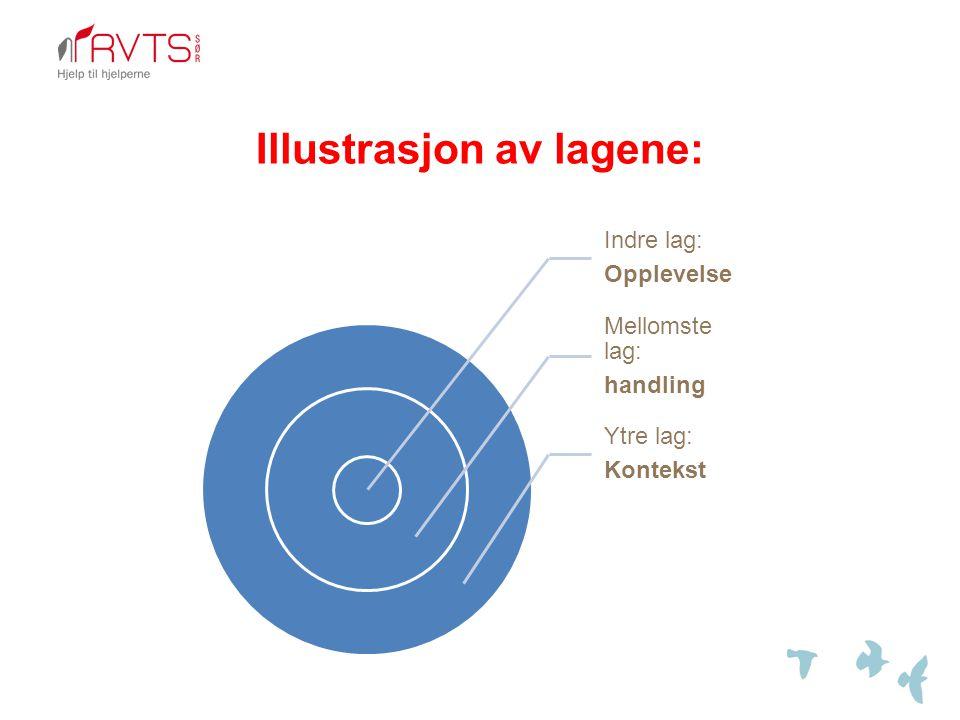 Illustrasjon av lagene: Indre lag: Opplevelse Mellomste lag: handling Ytre lag: Kontekst