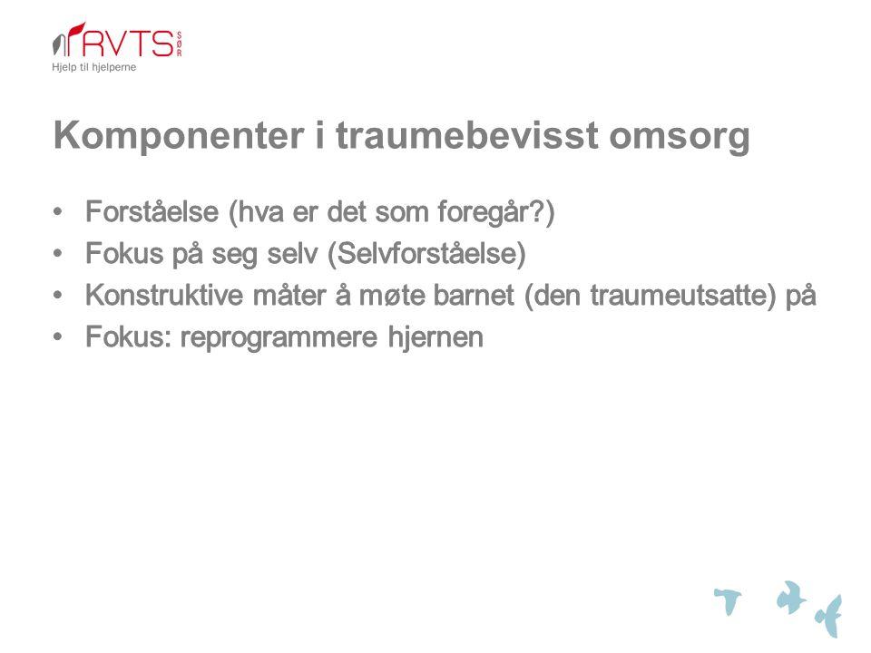 Komponenter i traumebevisst omsorg
