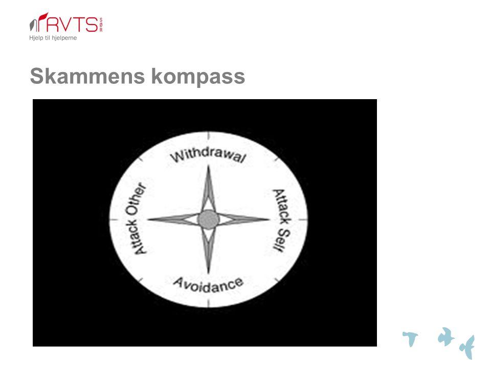 Skammens kompass