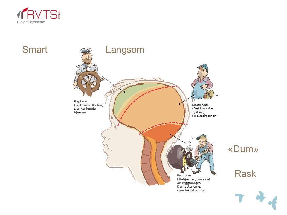 Effekter på hjernen