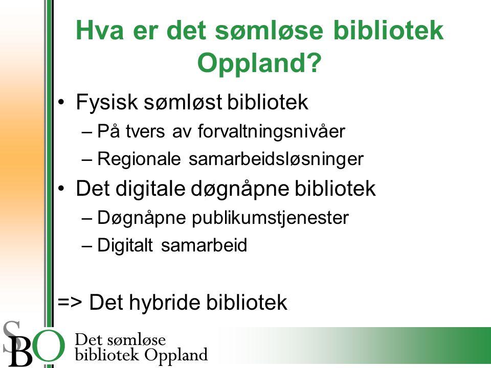 Hva er det sømløse bibliotek Oppland.