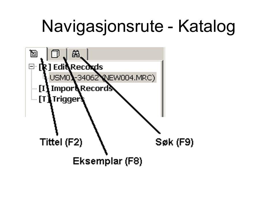 Navigasjonsrute - Katalog