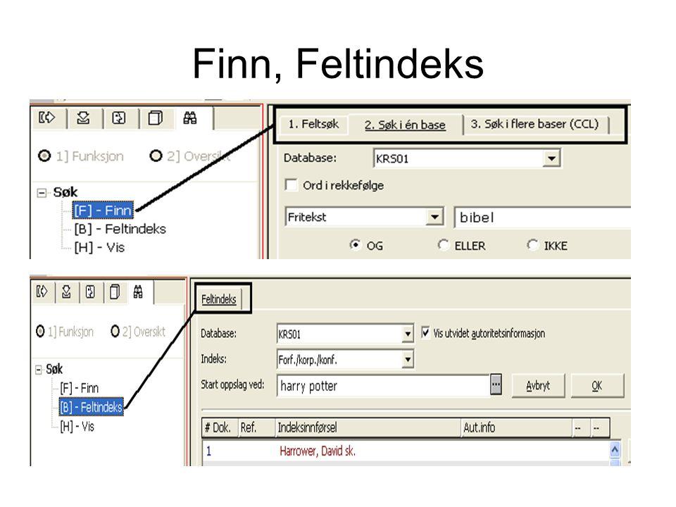 Finn, Feltindeks