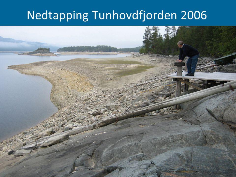 Nedtapping Tunhovdfjorden 2006