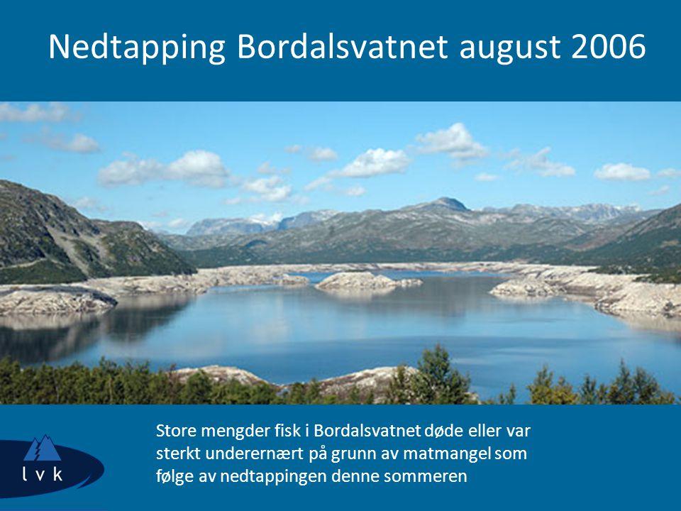 Nedtapping Bordalsvatnet august 2006 Store mengder fisk i Bordalsvatnet døde eller var sterkt underernært på grunn av matmangel som følge av nedtappingen denne sommeren