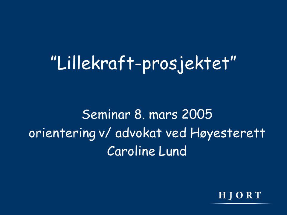 Lillekraft-prosjektet Seminar 8. mars 2005 orientering v/ advokat ved Høyesterett Caroline Lund