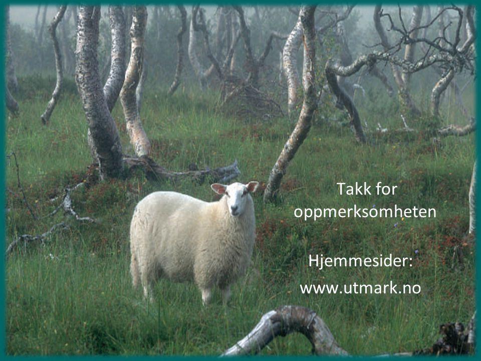 Takk for oppmerksomheten Hjemmesider: www.utmark.no