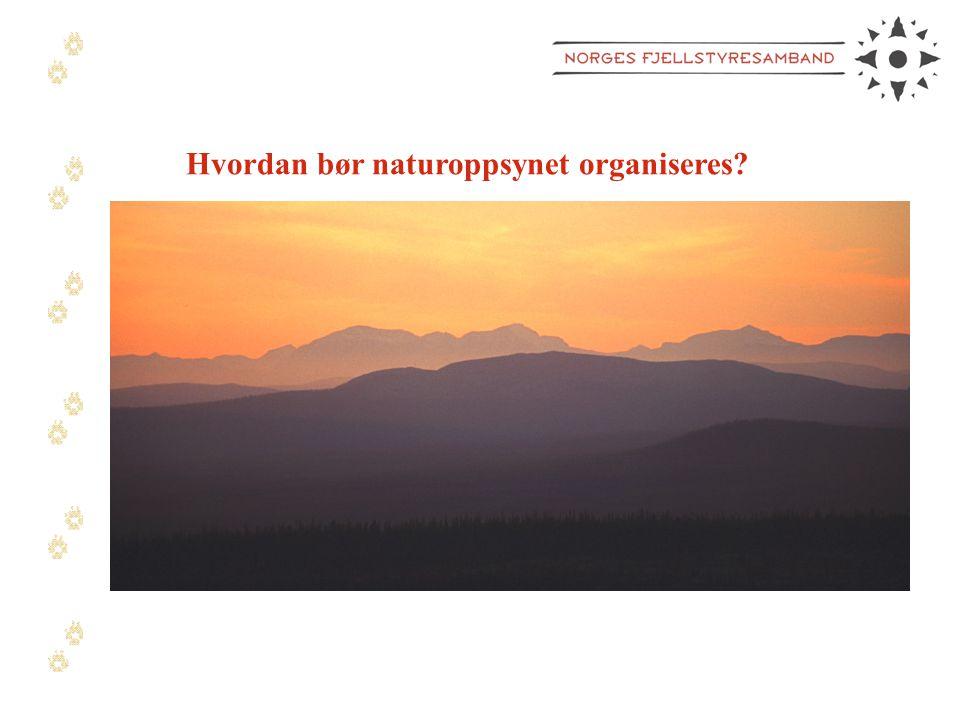Hvordan bør naturoppsynet organiseres?