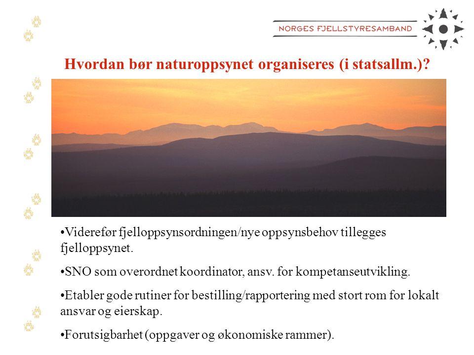 Hvordan bør naturoppsynet organiseres (i statsallm.).