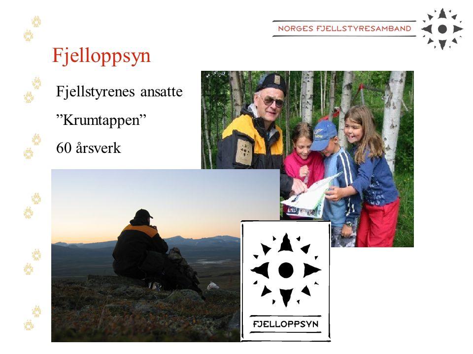 Fjelloppsyn Fjellstyrenes ansatte Krumtappen 60 årsverk