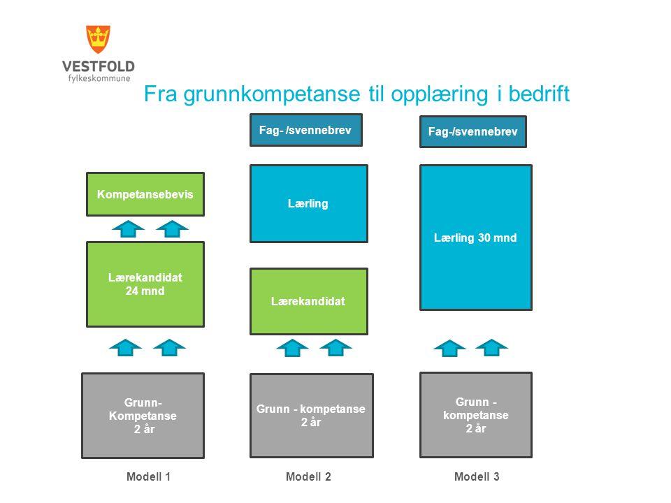 Fra grunnkompetanse til opplæring i bedrift Modell 1 Modell 2 Modell 3 Grunn- Kompetanse 2 år Grunn - kompetanse 2 år Grunn - kompetanse 2 år Lærekand