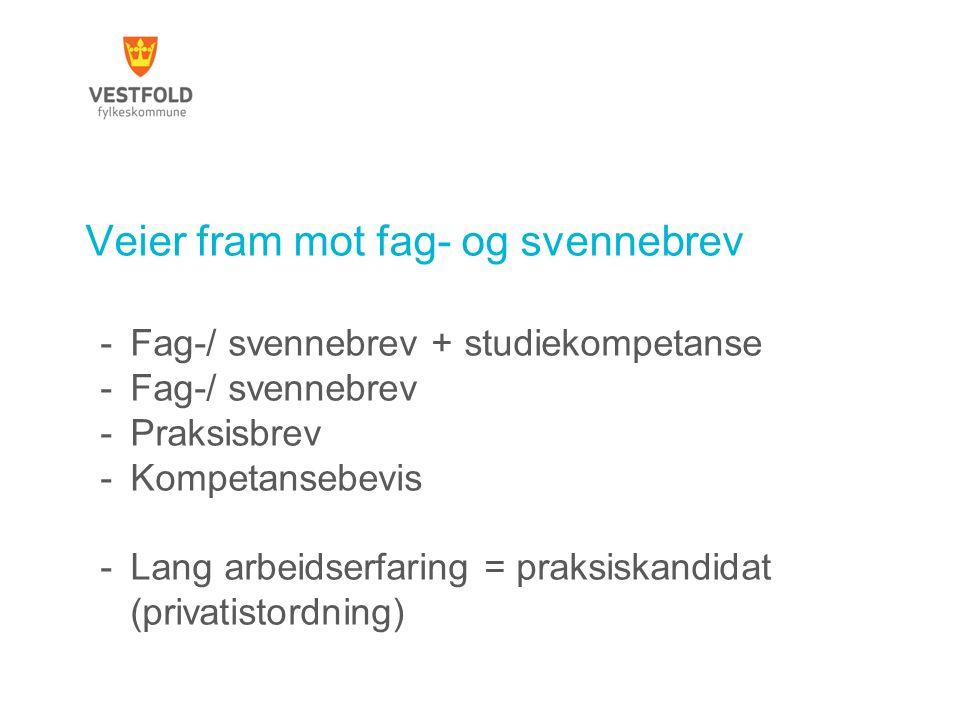 Veier fram mot fag- og svennebrev -Fag-/ svennebrev + studiekompetanse -Fag-/ svennebrev -Praksisbrev -Kompetansebevis -Lang arbeidserfaring = praksis