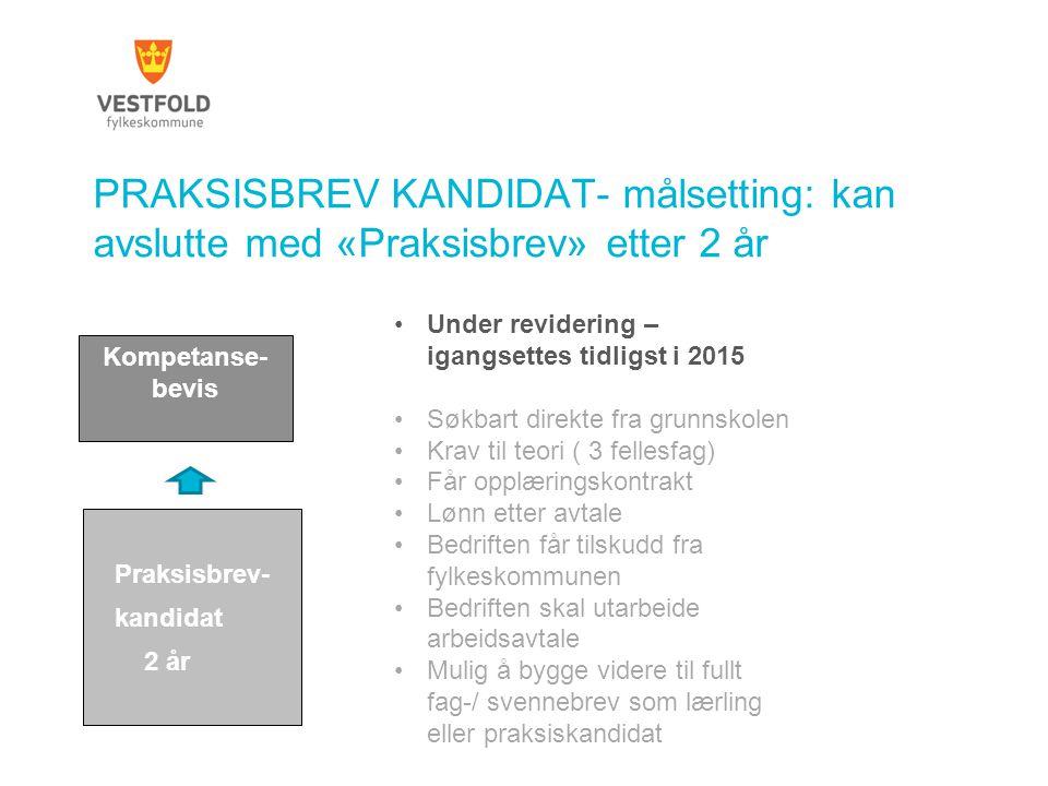 PRAKSISBREV KANDIDAT- målsetting: kan avslutte med «Praksisbrev» etter 2 år Praksisbrev- kandidat 2 år Kompetanse- bevis Under revidering – igangsette