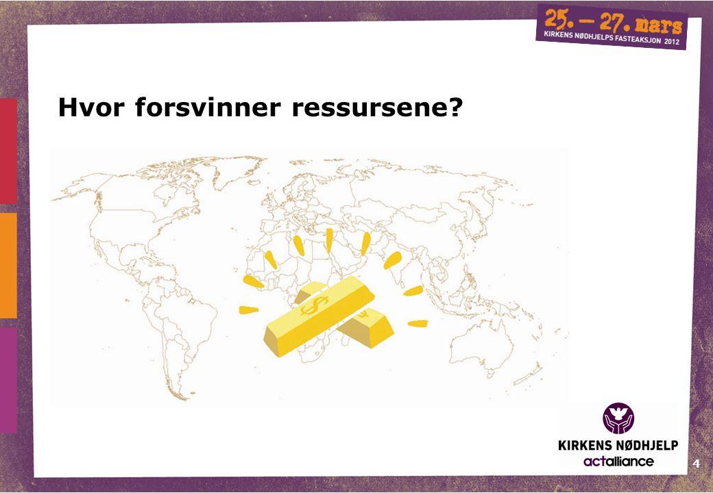 4 Hvor forsvinner ressursene?