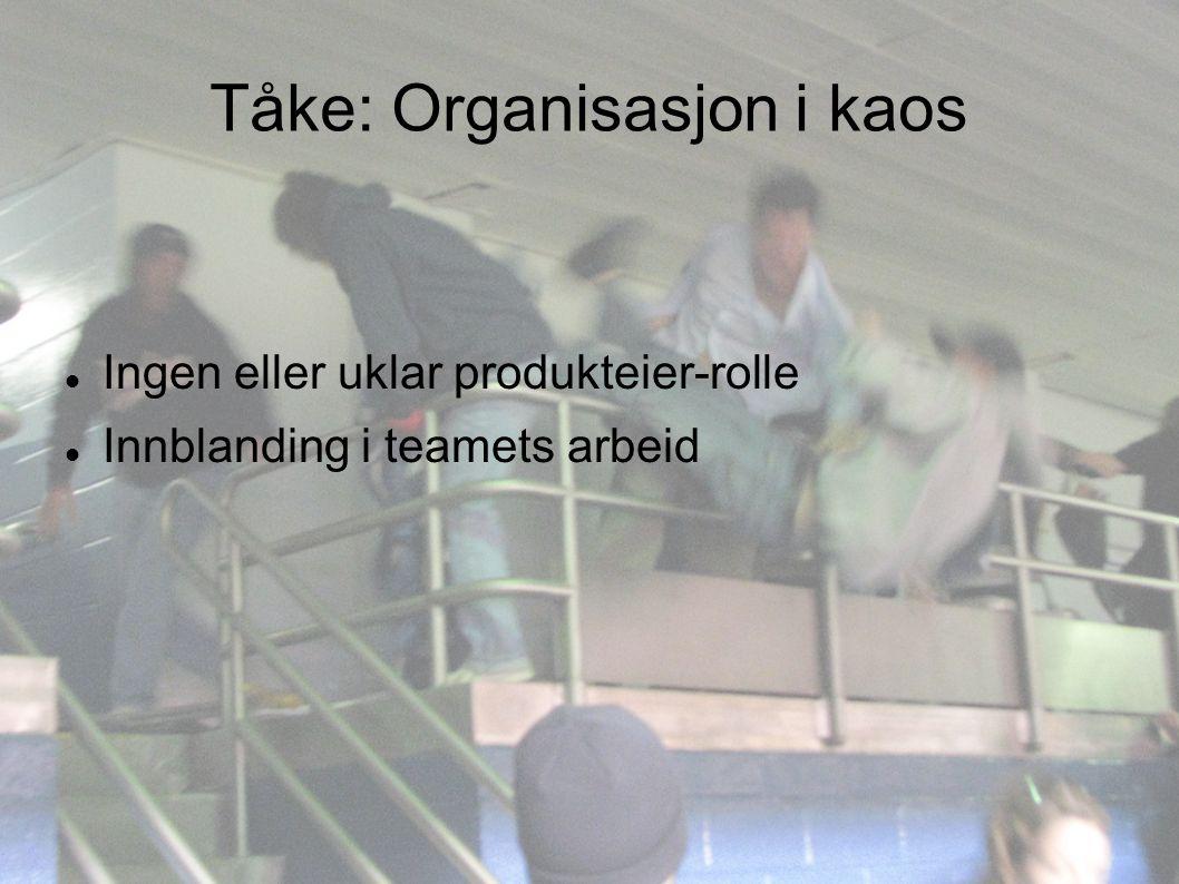 Tåke: Organisasjon i kaos Ingen eller uklar produkteier-rolle Innblanding i teamets arbeid