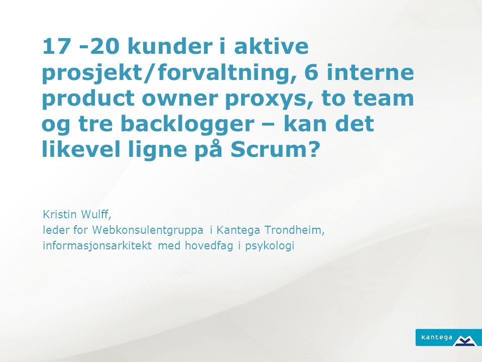 17 -20 kunder i aktive prosjekt/forvaltning, 6 interne product owner proxys, to team og tre backlogger – kan det likevel ligne på Scrum.