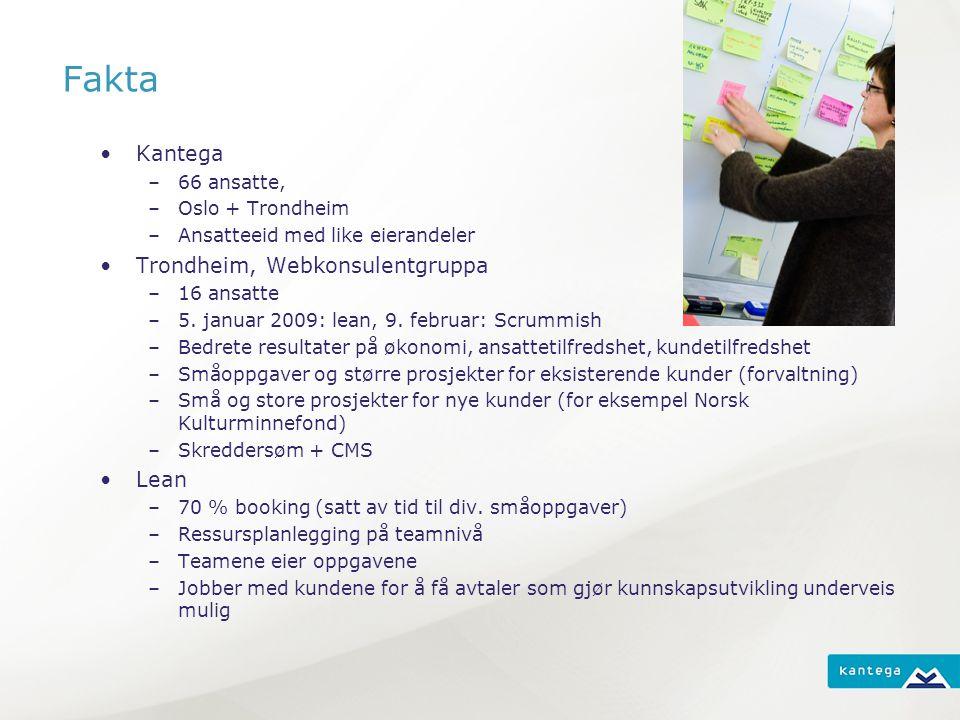 Fakta Kantega –66 ansatte, –Oslo + Trondheim –Ansatteeid med like eierandeler Trondheim, Webkonsulentgruppa –16 ansatte –5.