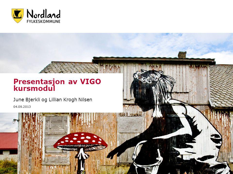 Presentasjon av VIGO kursmodul June Bjerkli og Lillian Krogh Nilsen 04.09.2013 Foto: Peter Hamlin
