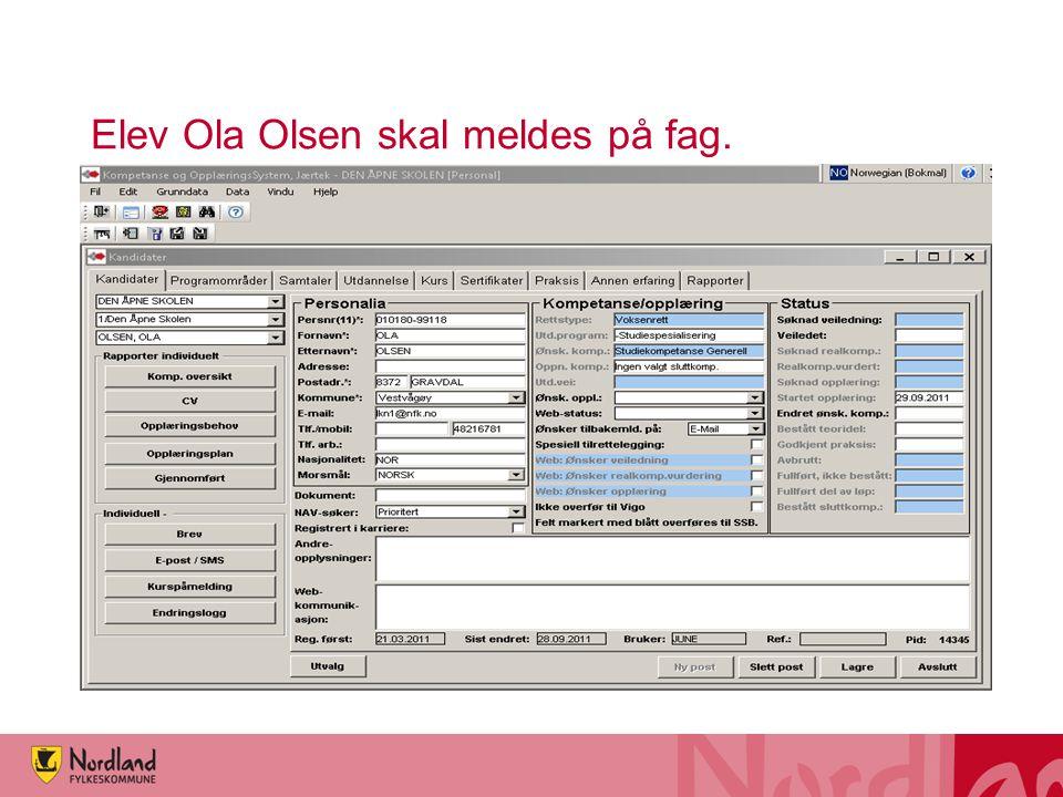Elev Ola Olsen skal meldes på fag.