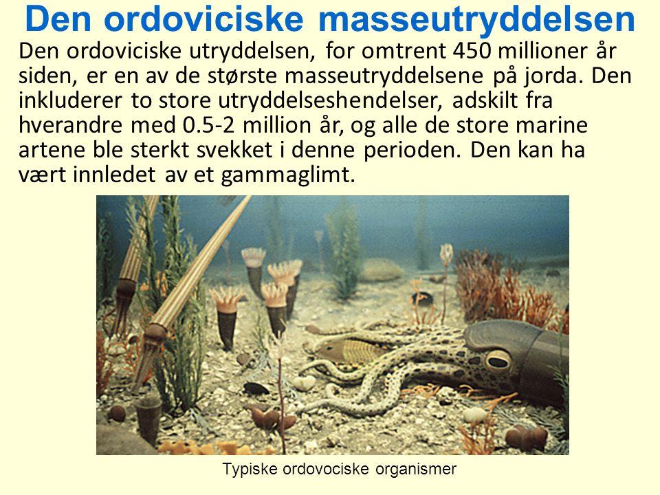 Den ordoviciske masseutryddelsen Den ordoviciske utryddelsen, for omtrent 450 millioner år siden, er en av de største masseutryddelsene på jorda. Den