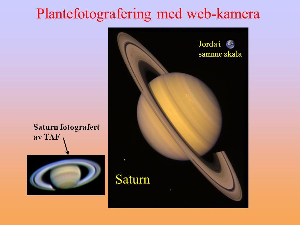 Plantefotografering med web-kamera Saturn fotografert av TAF Jorda i samme skala Saturn
