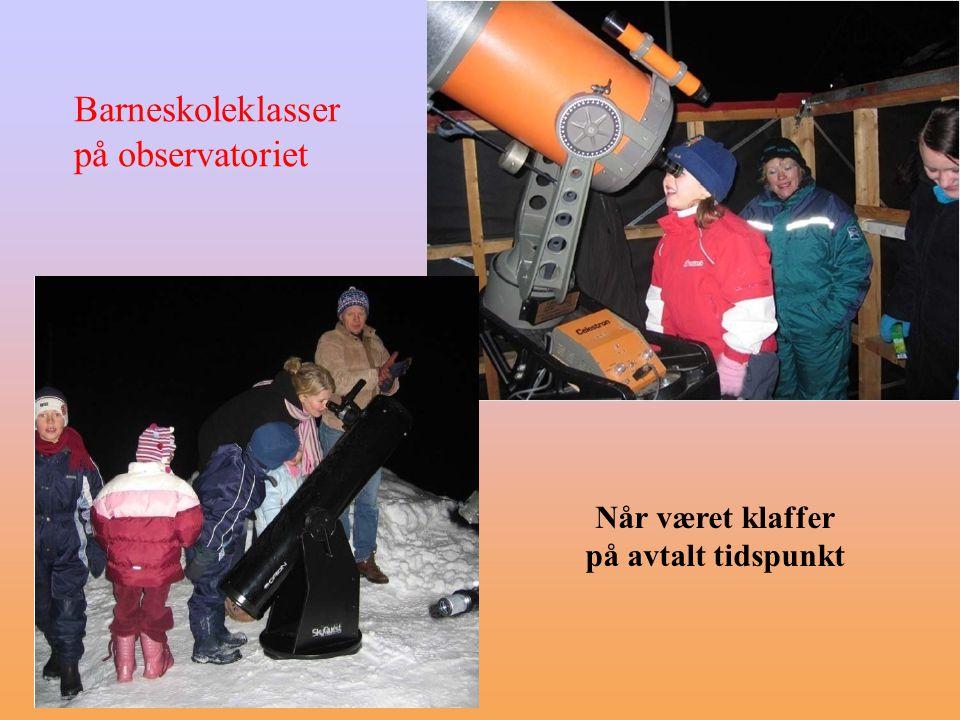 Brynjar Berg (TAF) WEB-kamera Stunt på offentlige steder (f.eks.