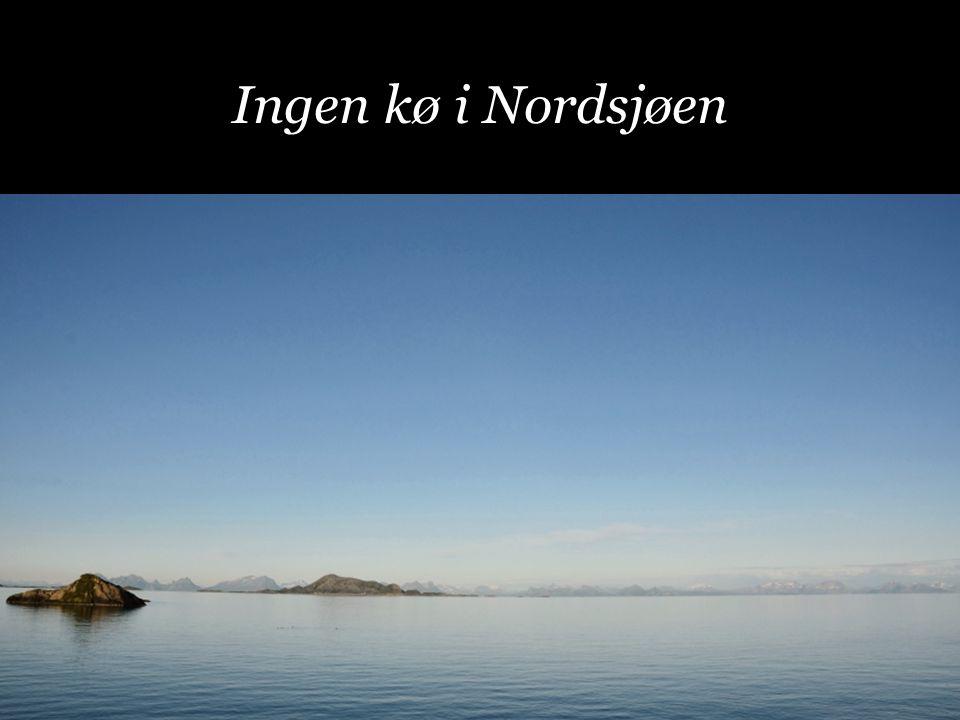Ingen kø i Nordsjøen