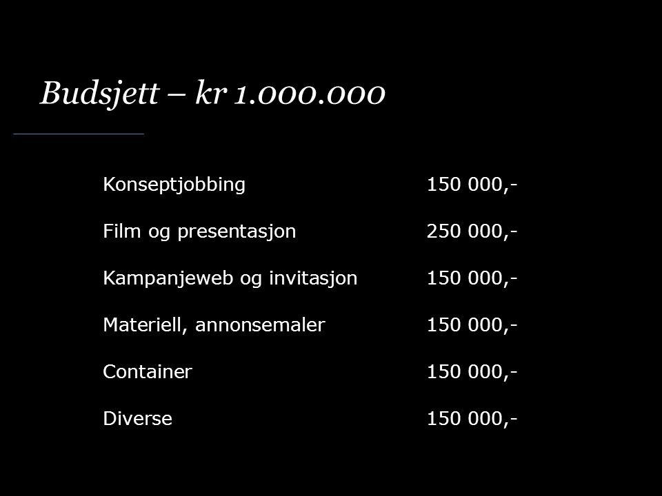 Budsjett – kr 1.000.000 Konseptjobbing150 000,- Film og presentasjon250 000,- Kampanjeweb og invitasjon150 000,- Materiell, annonsemaler150 000,- Container150 000,- Diverse150 000,-