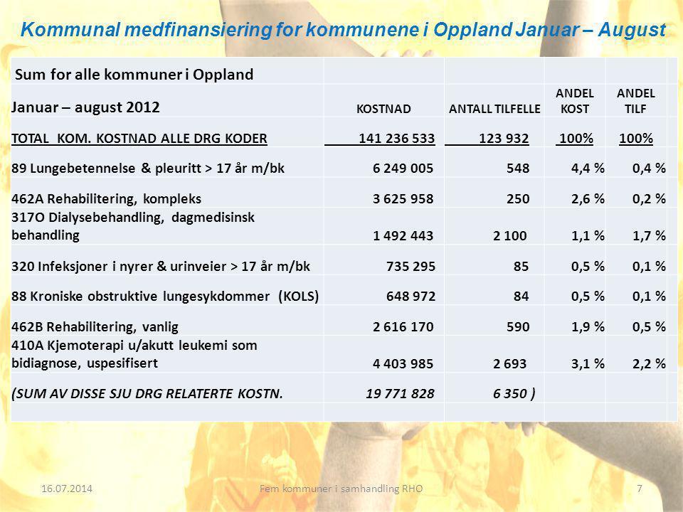 16.07.20148Fem kommuner i samhandling RHO All aktivitet 2.