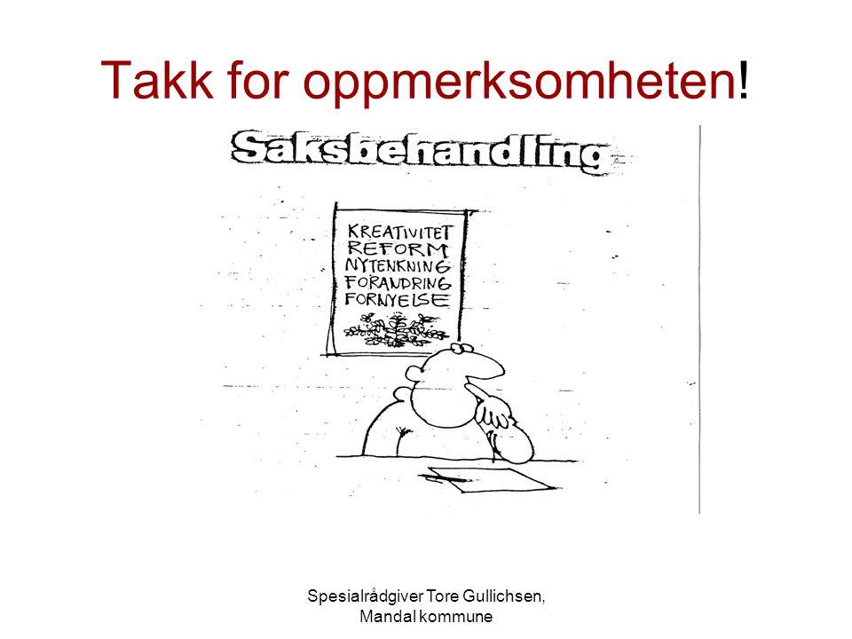 Spesialrådgiver Tore Gullichsen, Mandal kommune Takk for oppmerksomheten!