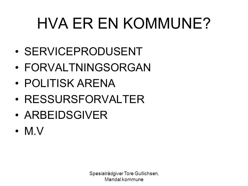 Spesialrådgiver Tore Gullichsen, Mandal kommune OFFENTLEGLOVA § 16 - forts.